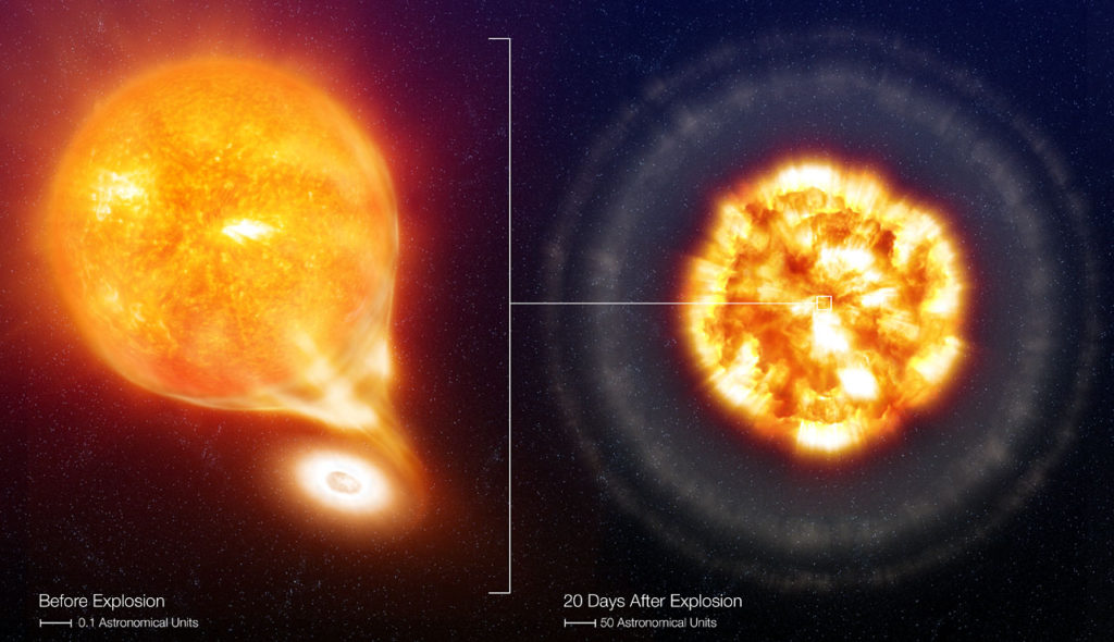 The White Dwarf (on the right) accretes material from the Red Giant star, which is losing gas in the form of stellar wind (the diffuse material surrounding the giant). Only part of the gas is accreted by the White Dwarf, through a so-called accretion disc which surrounds the compact star. The remaining gas escapes the system and eventually dissipates into the interstellar medium. The Red Giant star has a radius about 100 times larger than our Sun, while the White Dwarf is about 100 times smaller than the Sun.