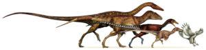 davide-bonnadonna-theropod-size-evolution-600-px-tiny-july-august-darren-naish-tetrapod-zoology
